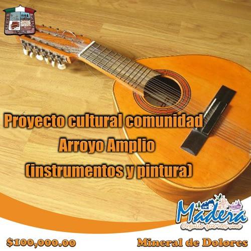 Proyecto-cultural-comunidad-Arroyo-Amplio-(instrumentos-y-pintura)