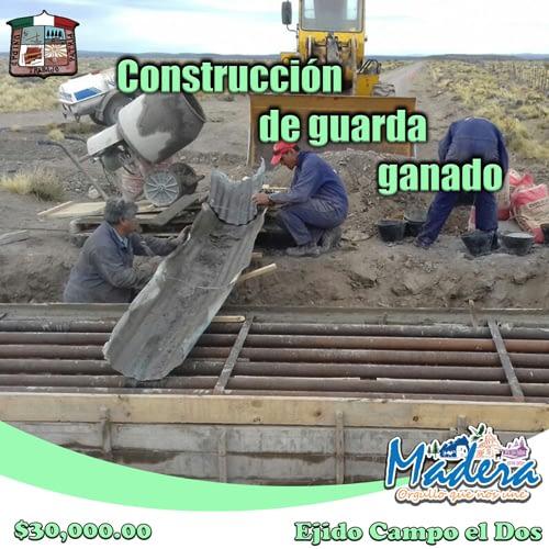Construcción-de-guardaganado
